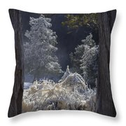 A Twisted Fairy Tale Throw Pillow by Mary Amerman