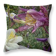 a taste of dew i do and PCC  garden too     GARDEN IN SPRING MAJOR Throw Pillow by Kenneth James