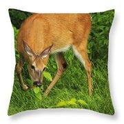 A Taste Of Nature Throw Pillow