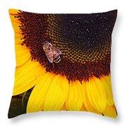 A Taste Of Sunshine Throw Pillow