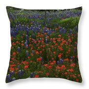 A Texas Roadside Throw Pillow