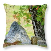 Along The Trail Throw Pillow