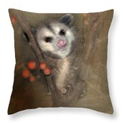A Thief In The Night Throw Pillow