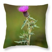 A Thorny Beauty Throw Pillow