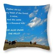 A Thousand Hills Throw Pillow