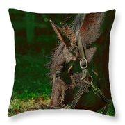 A Time To Eat Throw Pillow