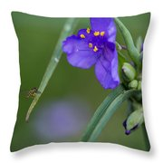 A Tiny Visitor Throw Pillow