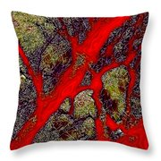 A Touch Of Autumn Abstract IIi Throw Pillow