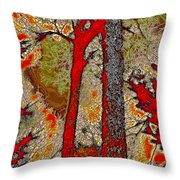 A Touch Of Autumn Abstract V Throw Pillow