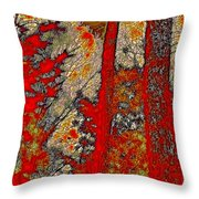 A Touch Of Autumn Abstract Vi Throw Pillow
