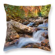 A Touch Of Autumn At Skinny Dip Falls Throw Pillow