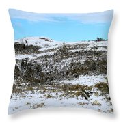 A Touch Of Blue Panorama Throw Pillow