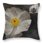 A Touch Of Color - Poppy Throw Pillow
