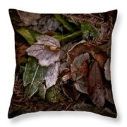 A Touch Of Frost Throw Pillow