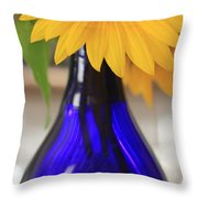 A Touch Of Summer In Winter Throw Pillow