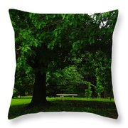 A Tree And A Bench Throw Pillow