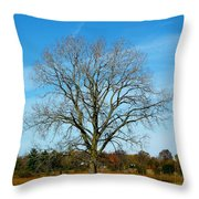 A Tree In Fall... Throw Pillow