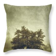 A Tree In The Fog 2 Throw Pillow by Scott Norris