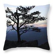 A Tree Of Mountains Throw Pillow