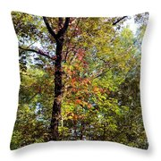 A Tree's Life Throw Pillow