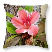 A Trees Life Throw Pillow