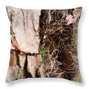 A Treetrunk Abstract Throw Pillow