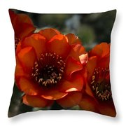 A Trio Of Red  Throw Pillow