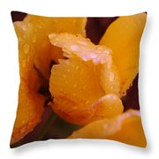 A Tullips Dappled With Rain Throw Pillow