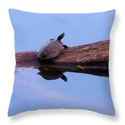 A Turtle Reflecting Throw Pillow