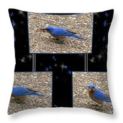 A Typical Eastern Bluebird's Lunch - Featured In Comfortable Art Group Throw Pillow