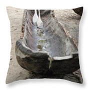 A Typical  Indigenous Dugout Throw Pillow