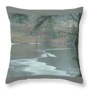 A Very Cold Rain Throw Pillow