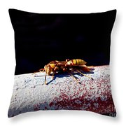 A Vespid Wasp  Throw Pillow