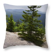 A View From A Mountain In A Vermont State Park Throw Pillow
