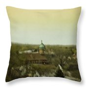 A View From Above Throw Pillow