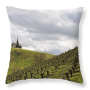 A View From Nadeau Throw Pillow