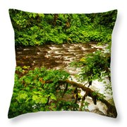 A View Of Eagle Creek Throw Pillow