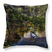 A View Of The Nature Center Merged Image Throw Pillow