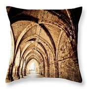 A View Of The Past Throw Pillow