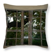 A View Throw Pillow