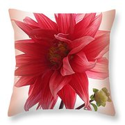 A Vision In  Coral - Dahlia Throw Pillow