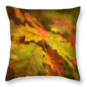 A Vision Of Fall Throw Pillow