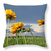 A Visit From A Bug Throw Pillow