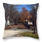 A Walk Down History Lane Throw Pillow