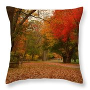 A Walk In Autumn - Holmdel Park Throw Pillow