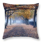 A Walk In Salem Fog Throw Pillow