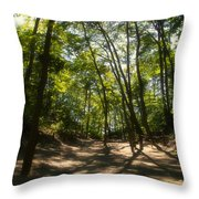 A Walk In The Dunes Throw Pillow