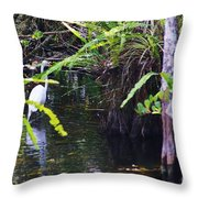 A Walk In The Glades Throw Pillow