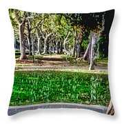 A Walk In The Park By Diana Sainz Throw Pillow