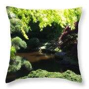 A Walk In The Woods 10 Throw Pillow
